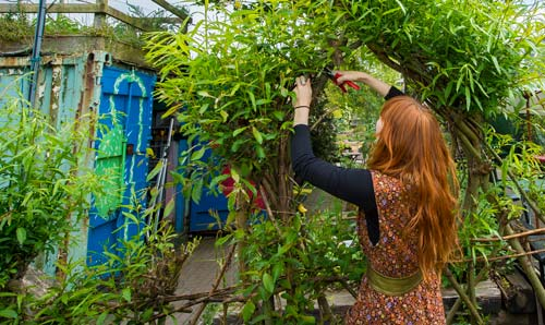 Student working in a community garden