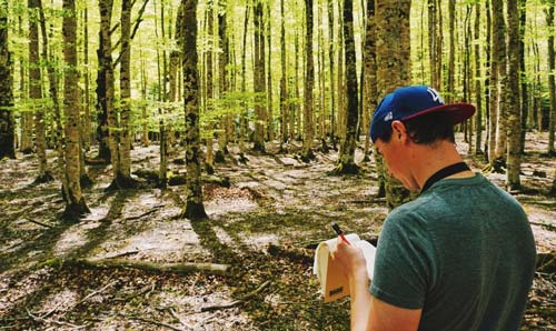 PhD student undertaking research in a forest environment