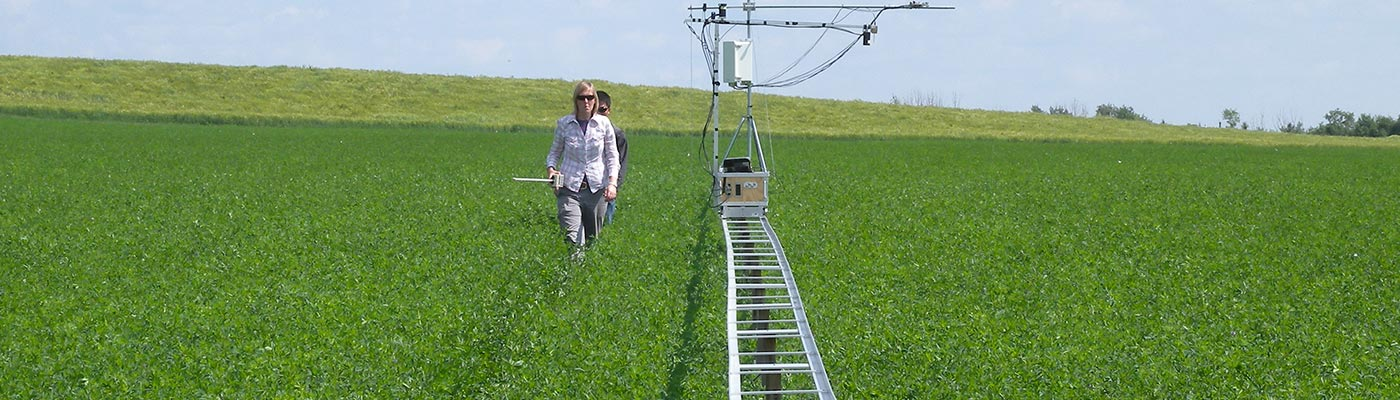 Female researcher in field with equipment