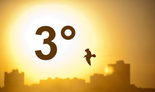 A bird flying across an urban landscape with the sun blazing in the background. 3 degrees is overlaid in text.