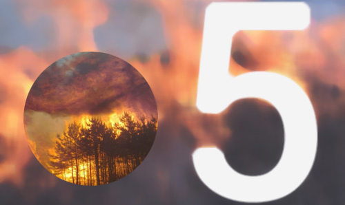 Wild fire with the number 5 in white text overlaid.