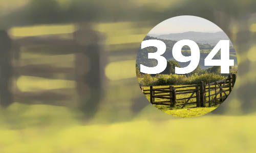 image of a field with a wooden gate and the number 394 overlaid in white text